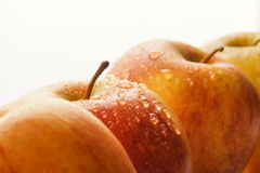 Apple tops with water drops Royalty Free Stock Photography