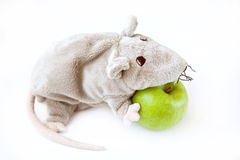 Apple with a toy. Green apple with a toy rat Stock Photos