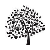 Apple träd - illustration Fotografering för Bildbyråer