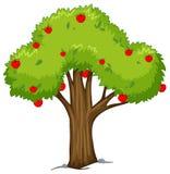 Apple träd med röda äpplen Royaltyfri Fotografi