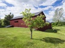 Apple träd och stor röd ladugård i vår arkivbilder