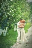 Apple-träd trädgård Royaltyfria Foton