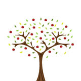 Apple tree. Vector image of apple tree isolated on white Stock Illustration