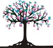 Apple-tree Royalty Free Stock Photos