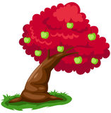 Apple tree. Illustration of isolated apple tree on white background Stock Images