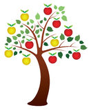 Apple tree. Illustration of apple tree with fruits Royalty Free Stock Images