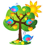 Apple tree. Cute blue birds sitting on apple-tree with red and yellow apples Stock Photography