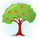 Apple tree. With ripe red apples  illustration Stock Photo