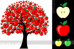 Apple tree. Illustration of a cartoon apple tree on white background, very useful for several concepts (font used is a open font license Royalty Free Stock Photography