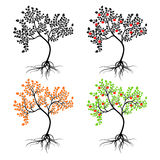 Apple-tree. Royalty Free Stock Photos