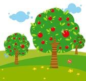 Apple tree. Illustration of cartoon apple tree Stock Images