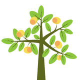 Apple tree. Abstract apple tree with ripe fruits Royalty Free Stock Photo