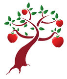Apple tree Royaltyfria Bilder