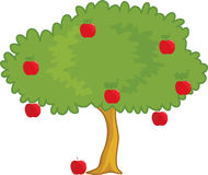 Apple tree. An illustration of a apple tree Royalty Free Stock Image