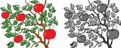 Apple-tree Stock Images