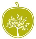 Apple tree in apple Stock Image
