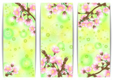 Apple tree banners Stock Photo