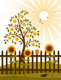 Apple tree behind fence. Illustrated apple tree and picket fence with sunflowers Stock Images