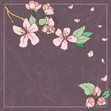 Apple tree blossom greeting card Stock Photo