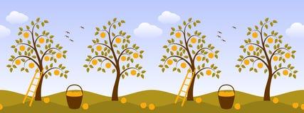 Apple tree border Stock Photography