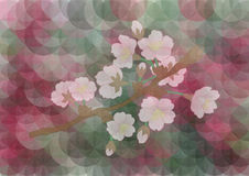 Apple tree branch on mosaic background Royalty Free Stock Images