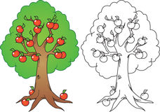 Apple tree. Cartoon apple tree illustration in color and black n white version Royalty Free Stock Photos
