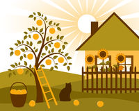 Apple tree and cottage. Illustrated rural scene with apple tree, cat, sunflowers behind fence and cottage Stock Photo