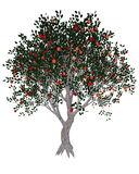 Apple tree - 3D render Royalty Free Stock Photos