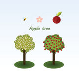 Apple tree. Flat design. Infographics Royalty Free Stock Photo