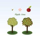 Apple tree. Royalty Free Stock Photo