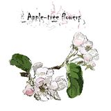Apple-tree flowers on a branch with leaves, stylization of a wat royalty free stock photography