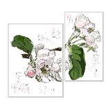 Apple-tree flowers on a branch with leaves, stylization of a wat stock photography