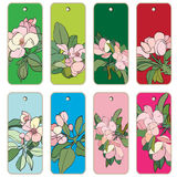Apple tree flowers tags. Price tags collection with apple tree flowers, hand drawn cartoon illustrations over colored backgrounds, series isolated on white Royalty Free Stock Photography