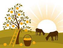 Apple tree and grazing goats. Illustrated background with apple tree and grazing goats Royalty Free Stock Photos