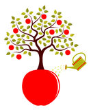 Apple tree growing from apple Stock Images