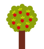 Apple tree isolated icon design. Illustration graphic Vector Illustration