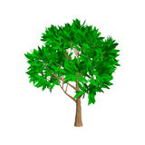 Apple tree. Isolated on white background. 3d Vector illustration Royalty Free Stock Photo