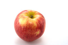 Apple. The apple tree (Malus domestica) is a deciduous tree in the rose family best known for its sweet, pomaceous fruit, the apple. It is cultivated worldwide Stock Images