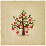 Apple tree old background Royalty Free Stock Photos