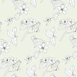 Apple tree pattern Royalty Free Stock Photography
