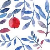 Apple tree pattern Stock Photos
