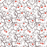 Apple tree's pattern Stock Photos