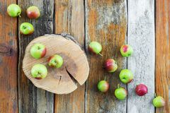 Apple tree stump and apples on rustic wooden background Royalty Free Stock Image