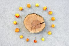 Apple tree stump with copy space surrounded by cherry apples Stock Photo