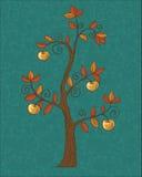 Apple tree. Stock Image