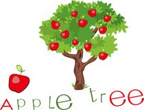 Apple tree with title. Red apple and apple tree with title Stock Photography