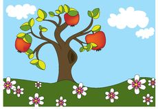 Apple tree vector Stock Image