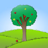 Apple tree. Vector cartoon apple tree on white background Stock Images
