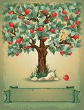 Apple tree. Vintage background with apple tree and place for your text Stock Images
