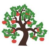 Apple tree on white Stock Image